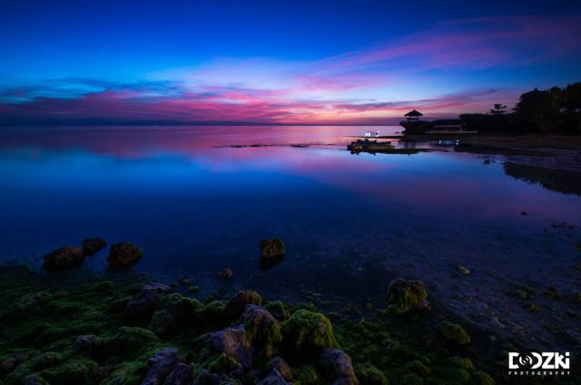 Cebu's Nature