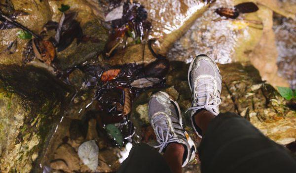 Pamutan to Buhisan Trek